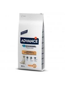 Advance Labrador/Golden...